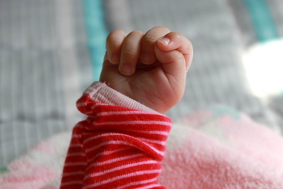 A defiant baby fist, raised high. The problem with the pro-life movement is that the babies can never join a union and protest.